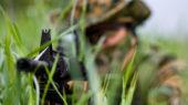 masacre paramilitar Colombia